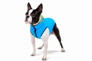 Jacket for Dog Airy Vest - Kurtka dla psa Roz. S-35